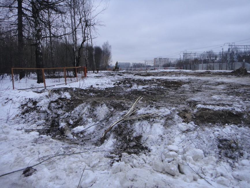 Вырубка парка Кусково. Фото: Facebook