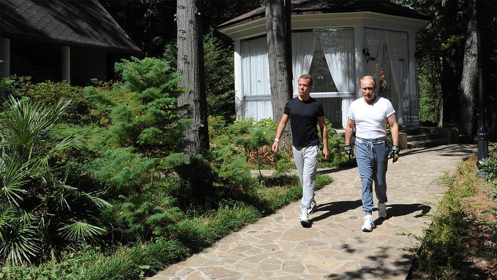 ЦУР: путинский «Бочаров ручей» впадет вморе за1,81 млрд рублей