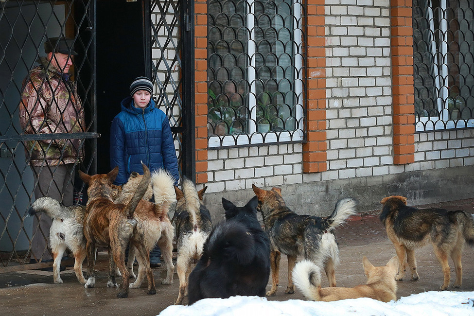 Фото: Владимир Смирнов/ ТАСС