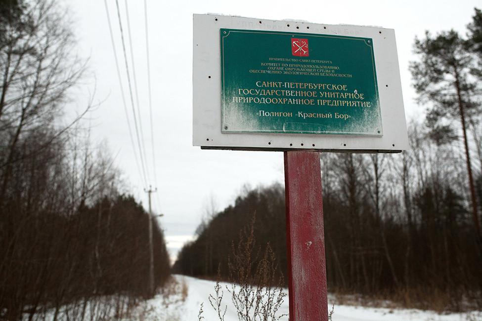 Фото: Евгений Степанов/ Интерпресс/ ТАСС