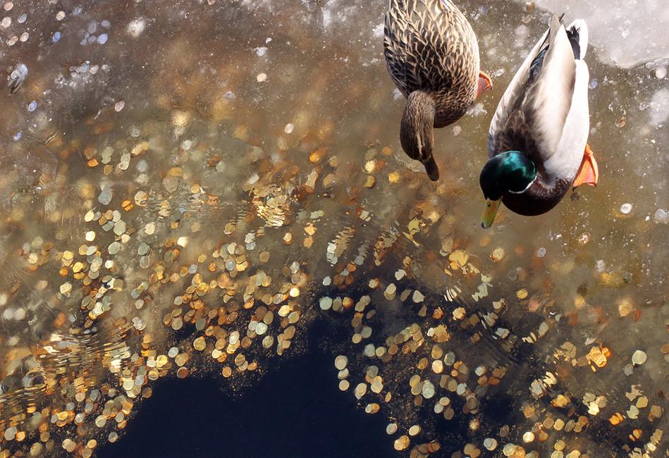 Фото: Елена Пальм/ Интерпресс/ ТАСС
