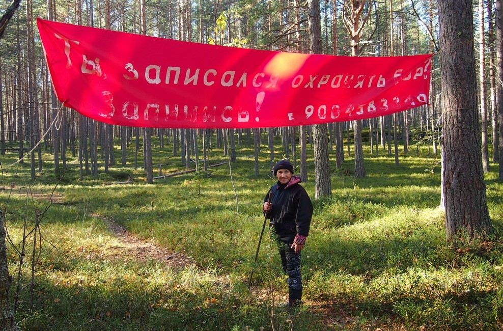Защитница Сунского бора Нина Шалаева. Фото: Валерий Поташов