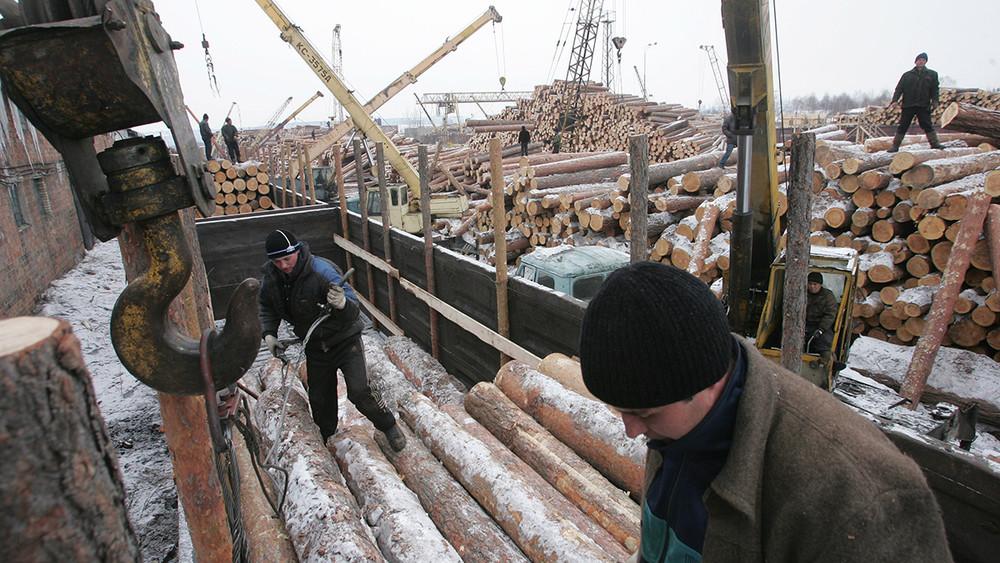 ВИркутске предотвратили незаконный вывоз леса вКитай. Сколько русского леса уходит зарубеж нелегально?