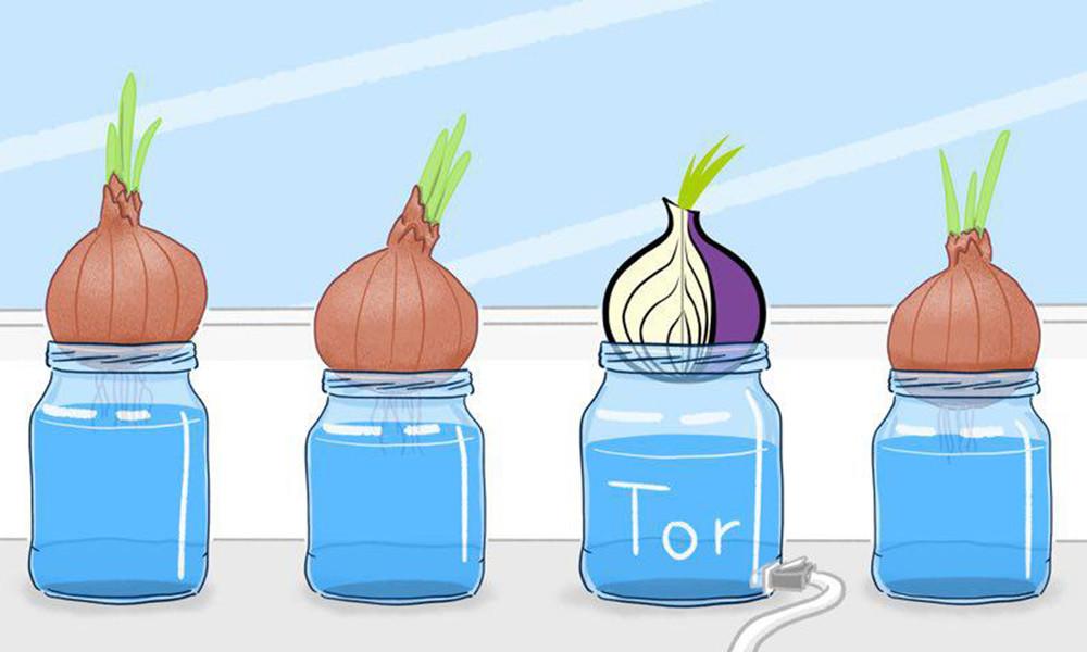 Узел Богатова: Tor-технологии могли сделать его случайной жертвой