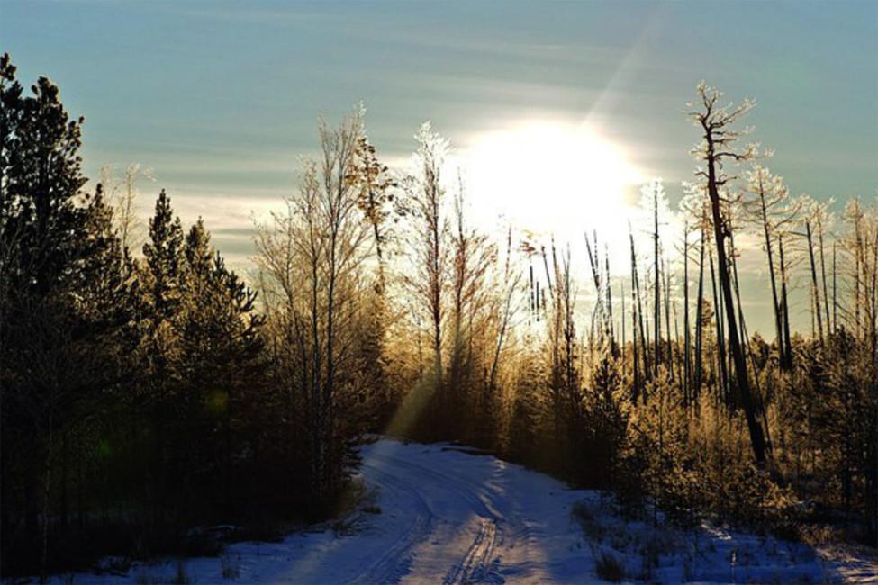 «Зима, −50»
