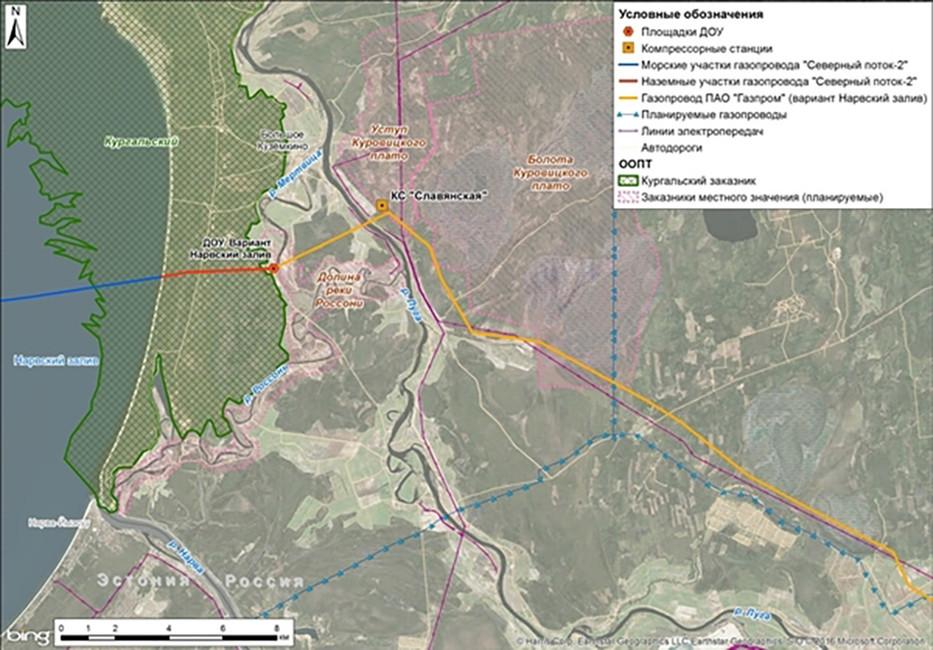 Схема прокладки «северного потока-2». Источник: greenpeace