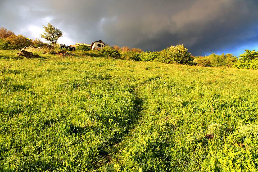 Дорога к«братским могилам». Фото: Лариса Бахмацкая