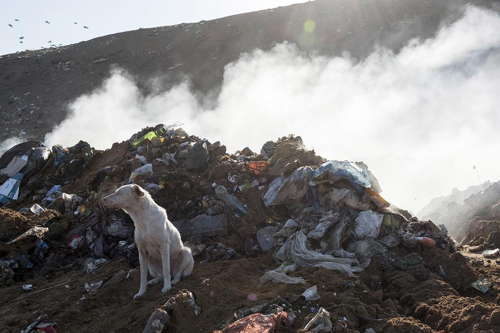 «Майдан» вОленино: выступавших против мусорного полигона обвинили в«подрыве стабильности»