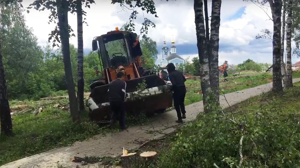 ВСергиевом Посаде полностью спилили аллею ветеранов ВОВ