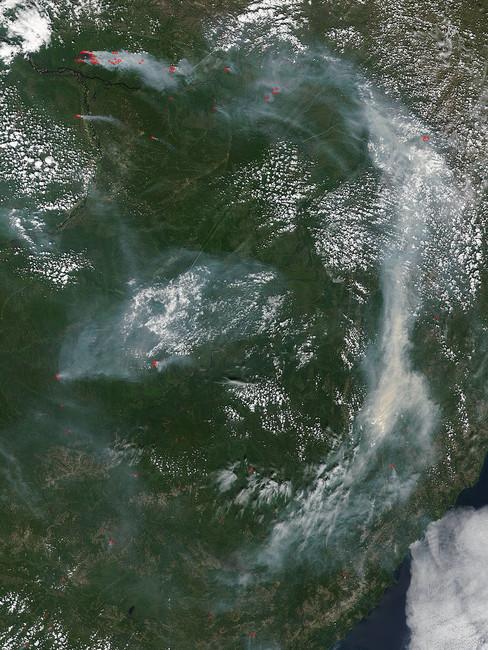 Карта лесных пожаров вЮжной Сибири. Фото: NASA