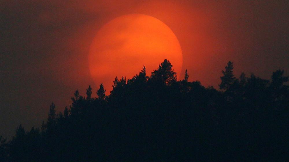 Уральские леса вогне. Почему вРоссии так иненаучились справляться слесными пожарами