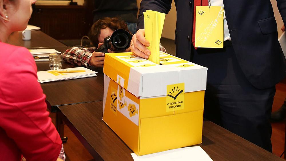 Бактериофаг для власти: вПодмосковье готовят референдум опрямых выборах