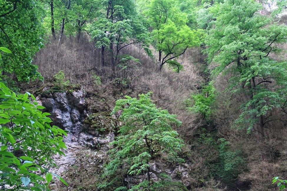 Гуамское ущелье. Фото: Открытая Россия