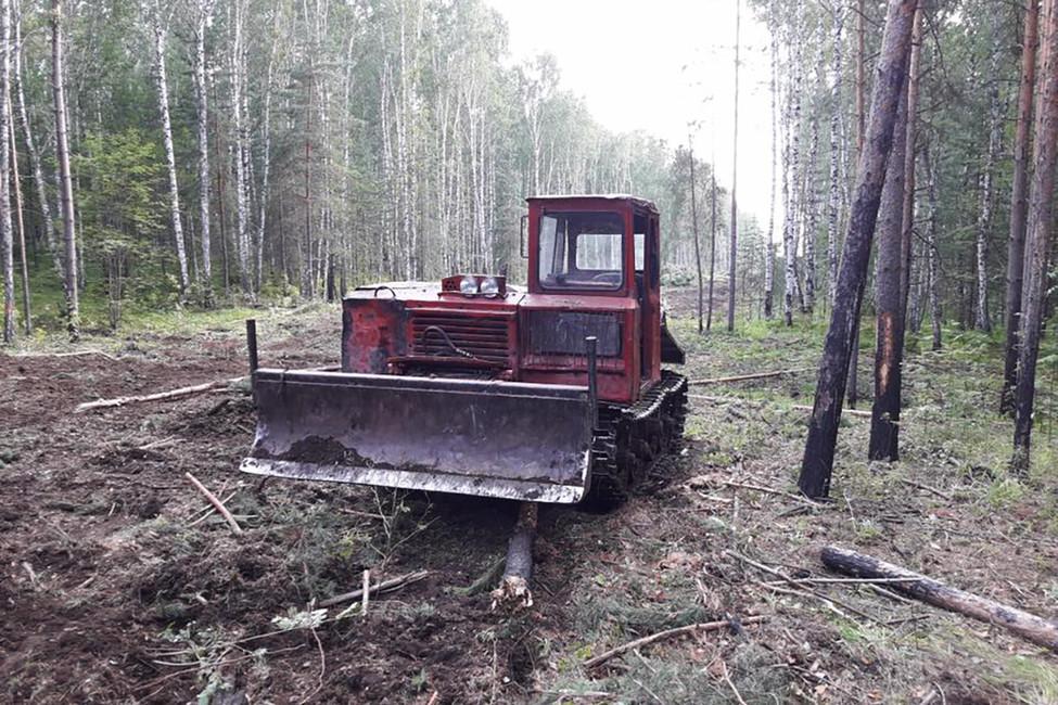Вырубка леса для ГОКа. Фото: Стоп ГОК