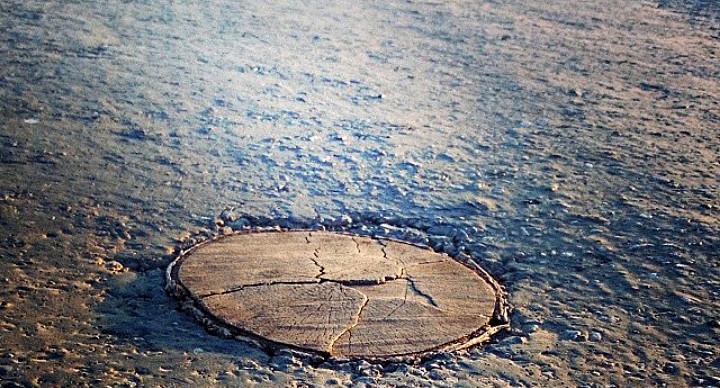 Житель Новосибирской области залатал дорожную яму пнем