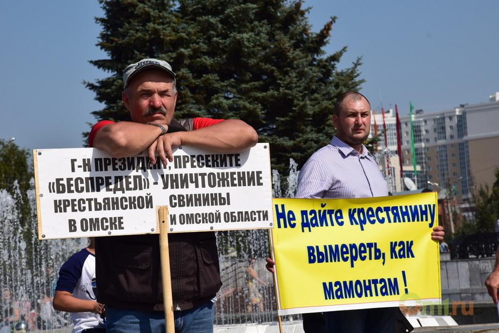 Фото: Екатерина Чаплинская/ om1.ru