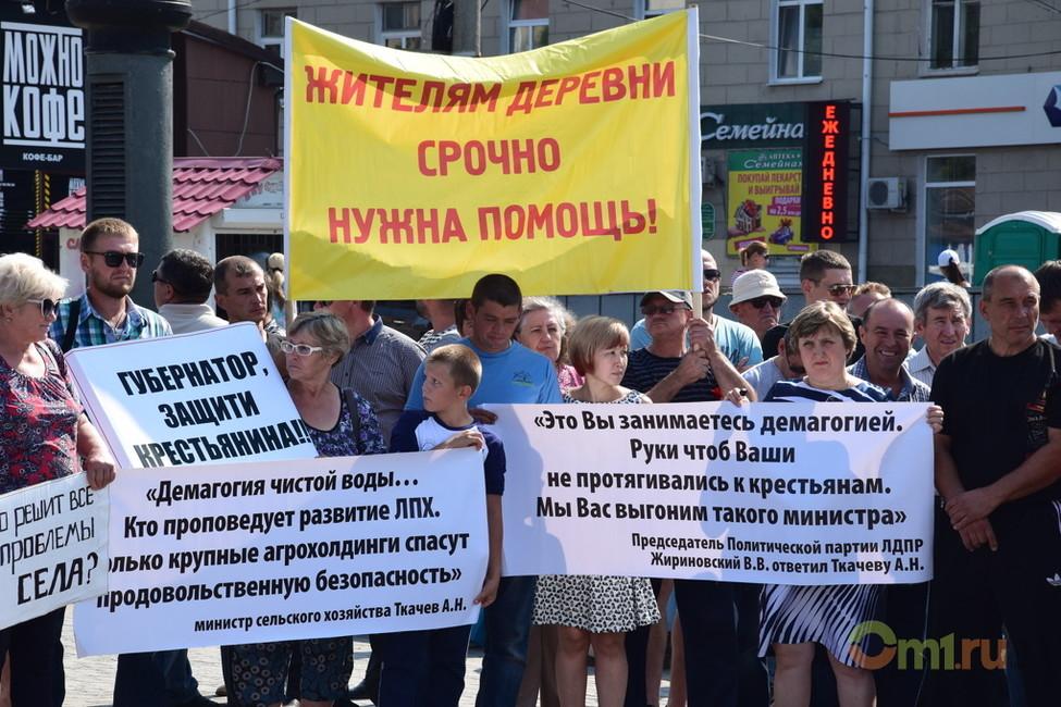 «Унас вилы уже заточены». ВОмске прошел митинг против уничтожения фермерских иподсобных хозяйств