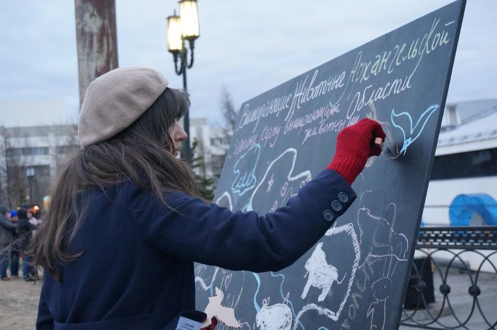 Фото: Экологическая общественная организация «Этас»/ ВКонтакте
