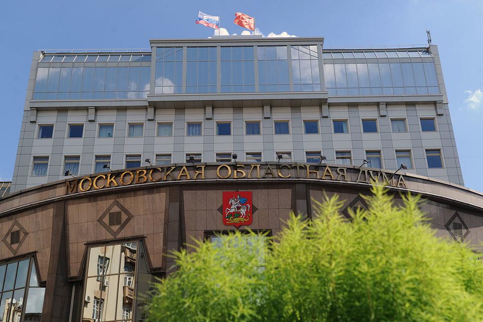 Подмосковные активисты требуют провести референдум овозвращении прямых выборов