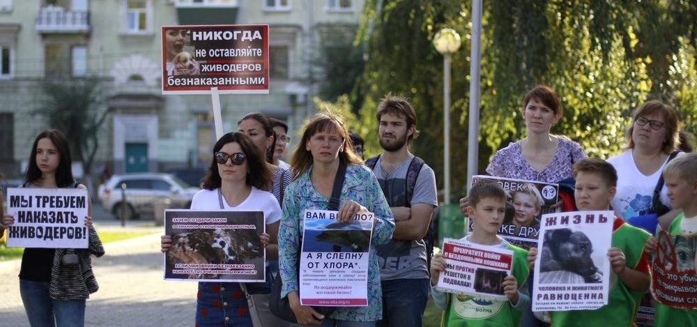 «Хотим законы как вГермании иАвстрии». ВСамарской области прошли три акции взащиту животных