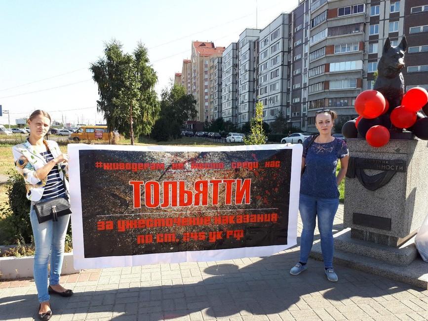 Зоозащитный пикет вТольятти. Фото: Матвей Михайлов