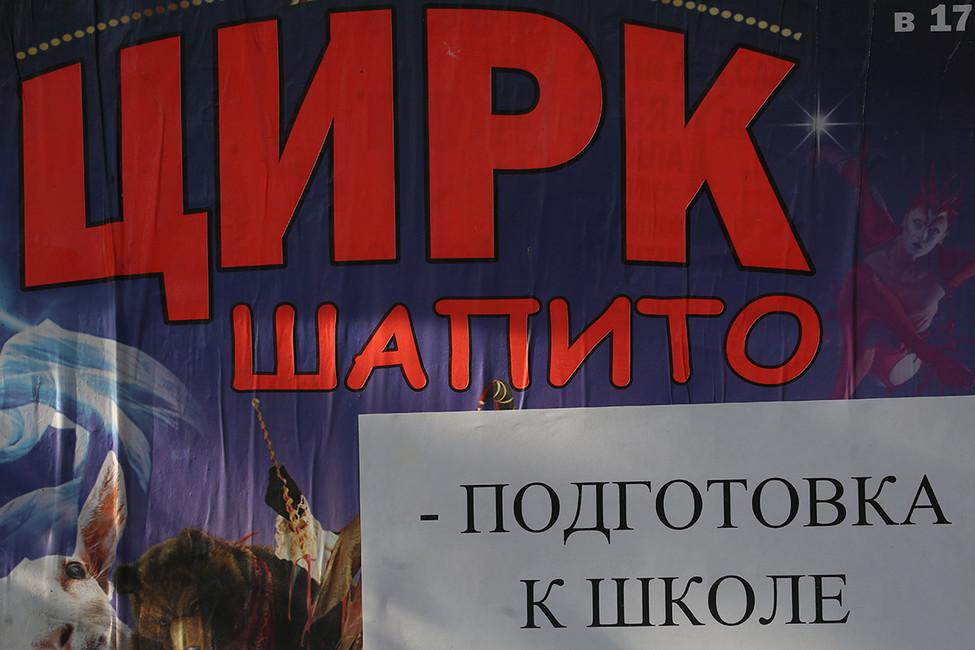 Новым главой Саратовского отделения «Единой России» стал бывший директор городского цирка