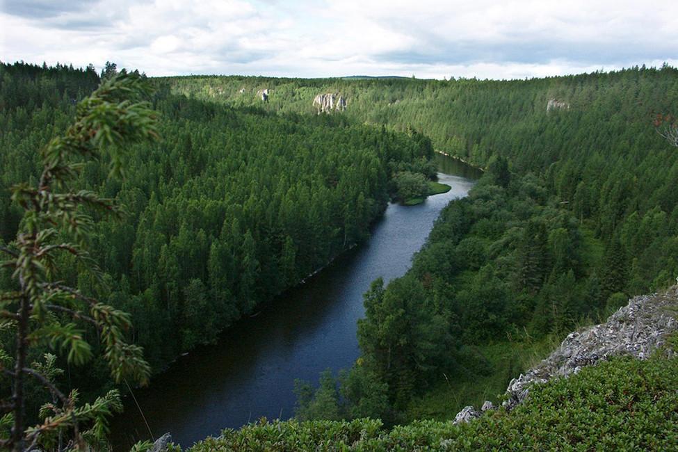Вгод экологии север Свердловской области остался без чистой реки