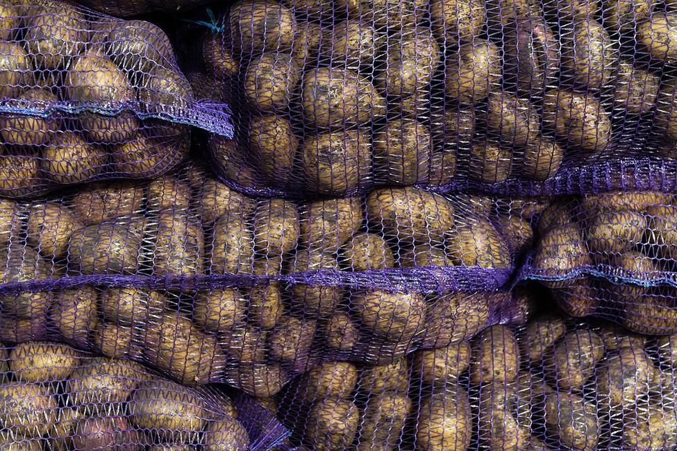 «Ведомости»: из-за кризиса россияне заменили молочные продукты макаронами икартофелем